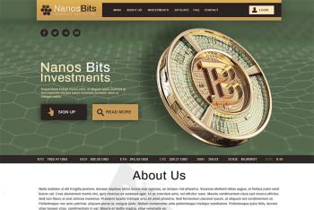 nanosbits